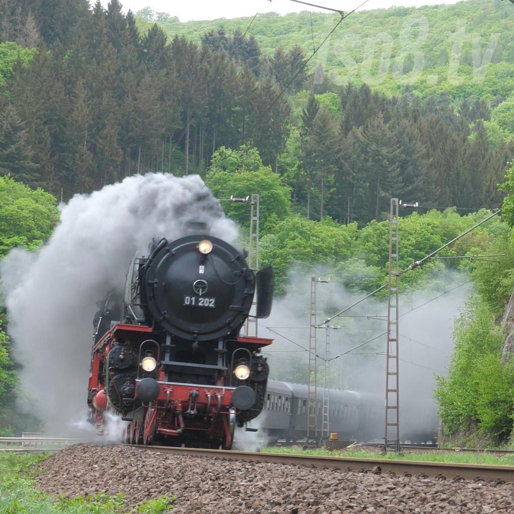 DB 01-202